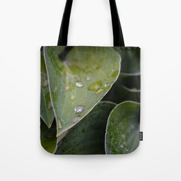 Leaves After Rain Tote Bag