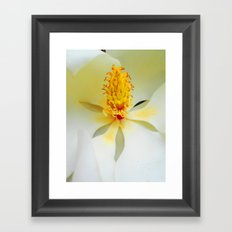 Heart of the Magnificent Magnolia Framed Art Print