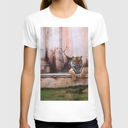 Laugh Along, Human T-shirt