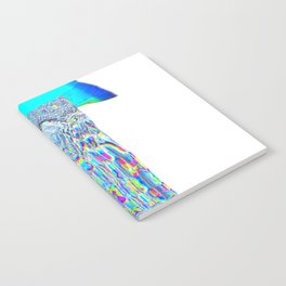 Indigo blast Notebook