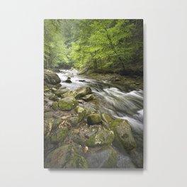 Mountain Stream in the Smoky Mountains Metal Print