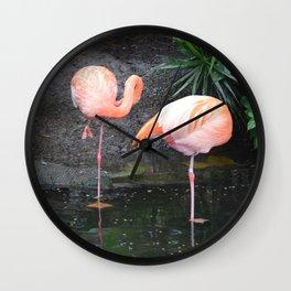 National Aviary - Pittsburgh - American Flamingo 1 Wall Clock