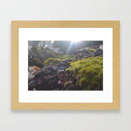 Light and Stone Framed Art Print