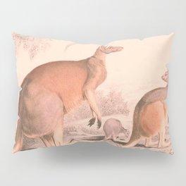 Vintage Kangaroo Family Illustration (1849) Pillow Sham