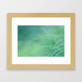 Tropical NO3 Framed Art Print