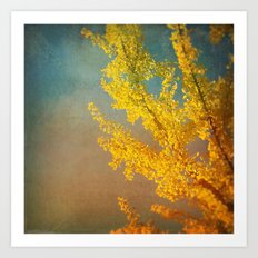Yellow Ginkgo Tree in Autumn Art Print