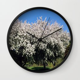 Crab Apple Trees in the Spring Wall Clock