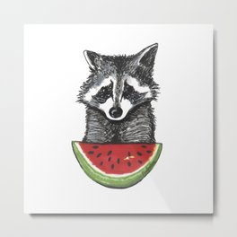 Racoon and watermelon Metal Print