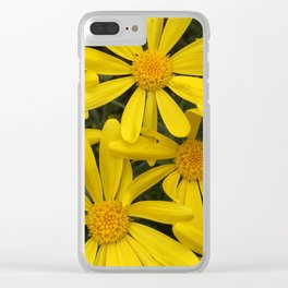 Botanical series - yellow daisies up close and personal Clear iPhone Case