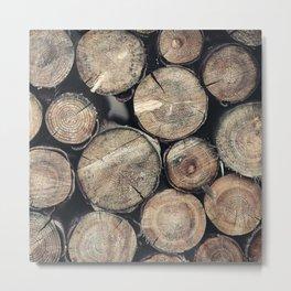 Wood Spirit Metal Print