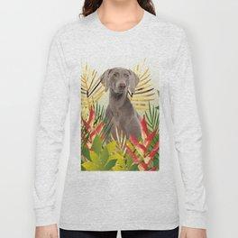 Weimaraner Dog in garden Long Sleeve T-shirt