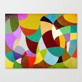 Curves - Chita Canvas Print