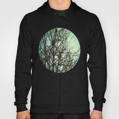 Cardinals in Winter Branches Hoody