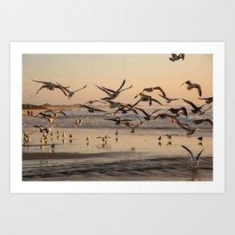 Seagull Birds Flying at Sunset on the Beach in California Photography, Beach Art, California Coast Home Decor, Fine Art Photography Art Print