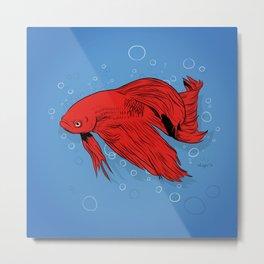 Betta Fish :: Art Print Metal Print