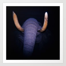 Elephant in the Dark Art Print