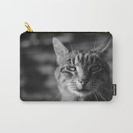 Ashes Cat Carry-All Pouch