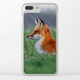 Red Fox Vixen in the Grass Clear iPhone Case