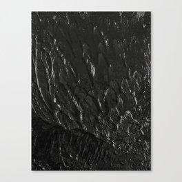 No.5 Canvas Print