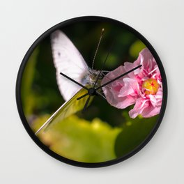 White butterfly on a plant in nature Wall Clock