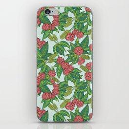 La Vega iPhone Skin