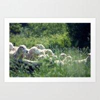 Ewe Are Sheep Art Print