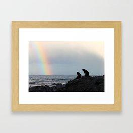 Peaceful Seals, Kaikoura Framed Art Print