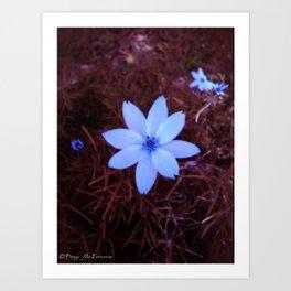 Shambhala Flower - White on Red 1 Art Print