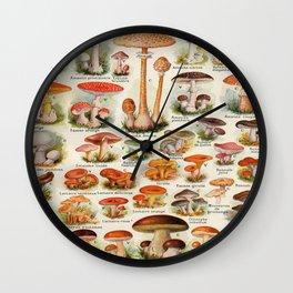 Mushroom Varieties Chart Species Vintage Scientific illustration French Language Wall Clock