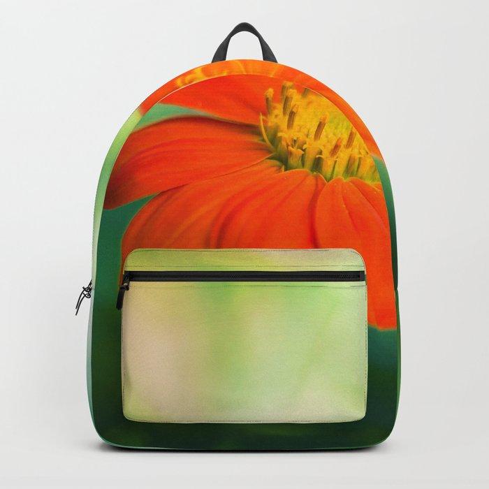 Dear Spring Backpack