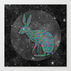 A Hare to the Left Canvas Print