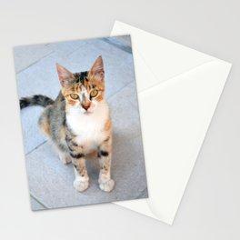 City Cat Stationery Cards