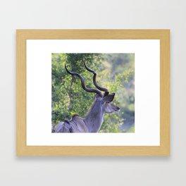 Hot Horns Framed Art Print