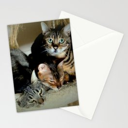 Three Close For Comfort Stationery Cards