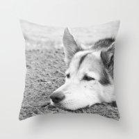 husky Throw Pillows featuring husky by MrBdigital