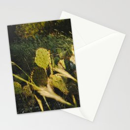 An Evening Hike Stationery Cards