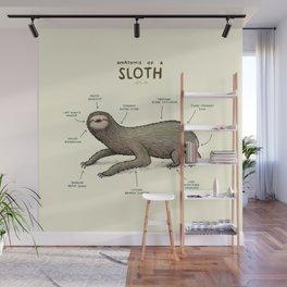 Anatomy of a Sloth Wall Mural