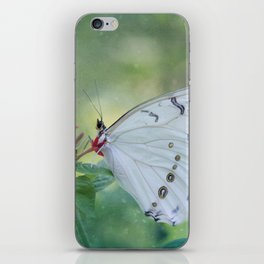 White Morpho Butterfly iPhone Skin