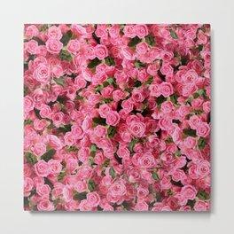 Pink Rose Floral Pattern Metal Print