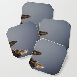 Palmtrees Coaster