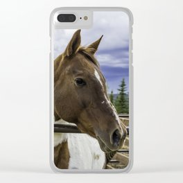 Beautiful Horse with Brown and White Patches Watching a Storm Coming in Clear iPhone Case