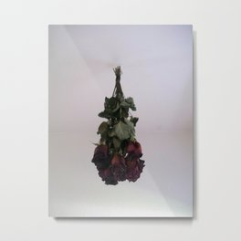 Hanging Roses Metal Print