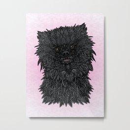 Black Pomeranian Metal Print