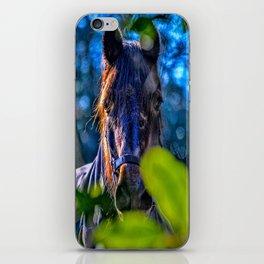 Mylor Walk - Broads Lane Horse iPhone Skin