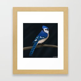 jz.birds Blue Jay Bird Design Framed Art Print