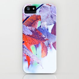 Raindrops on Autumn Leavs iPhone Case