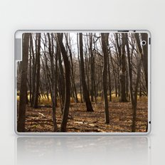 Forest Through the Trees Laptop & iPad Skin