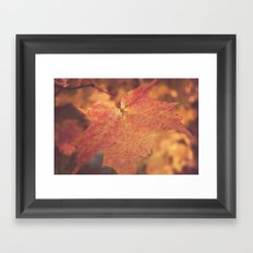 Autumn Bright Framed Art Print