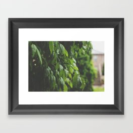 Sun Shower Framed Art Print