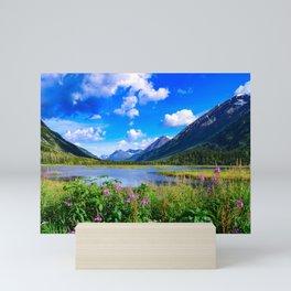 God's_Country - IV, Alaska Mini Art Print
